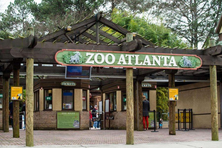 Animal-loving students volunteer at Zoo Atlanta