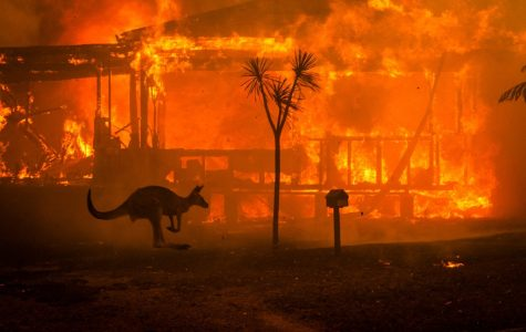 Looking for someone to point the finger at for the devastating brush fires in Australia? Look no further than oil and gas companies.