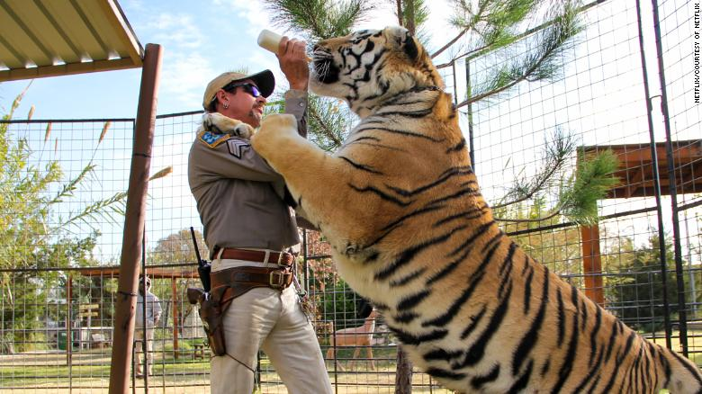 Joe Exotic feeds one of his tigers in an episode of