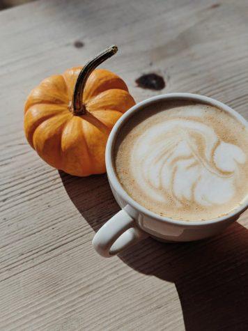 Pumpkin season is back!