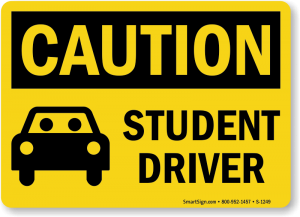 Taking a test through a private company such as Nathans Driving School has several advantages over taking it at the Department of Drivers Services, including difficulty in finding an appointment time due to Covid restrictions.
