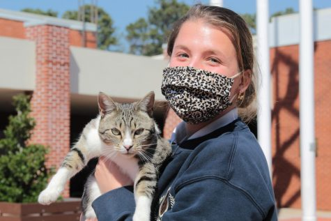 Seaver Cat speaks out: I am a cat of dignity